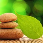 Cultivando a calma e a serenidade no dia a dia