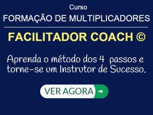 Facilitador Coach